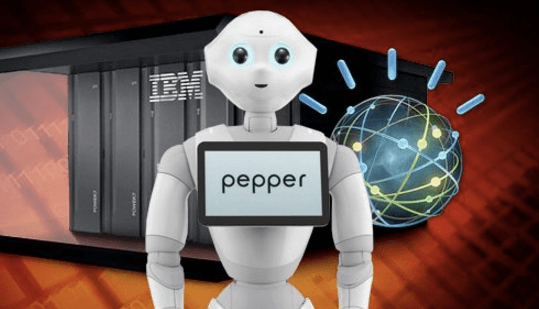 Pepper&Watson