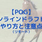 【POG】オンラインドラフト大成功!リモートドラフトのやり方と注意点